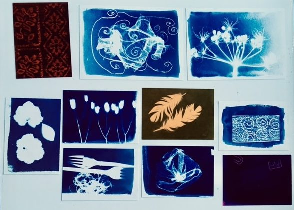 Cyanotype workshop at The Art House